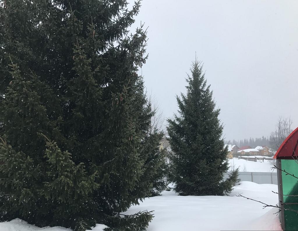 dom-bogaiha-polevaya-ulica-217246643-1